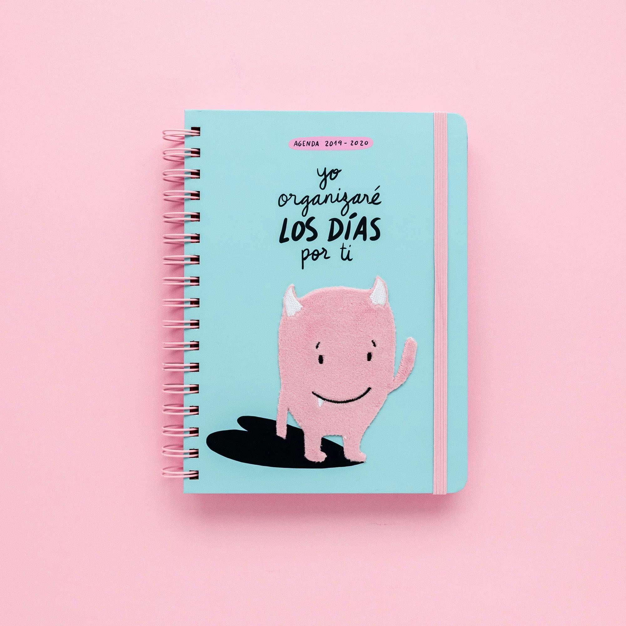 Agenda escolar 2019-2020 Lyona: Lyona: 9788417166403: Amazon ...