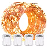 Amazon Price History for:DecorNova 60 LED IP44 Waterproof Copper Wire String Lights with Timer and 3AA Battery Case, 19.7-Feet, Warm White (Set of 4)