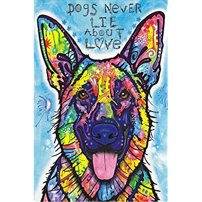 WHJKL Boy and Girl Diamond Painting Kits for Adults Fidget Spinner Kids Toys DIY 5D Christmas Gift Embroidery Pictures/Colored German Shepherd 40x50cm: Arts, Crafts & Sewing