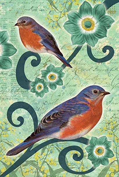 Amazon Com Toland Home Garden Bluebirds 28 X 40 Inch Decorative Spring Flower Bird Branch House Flag Garden Outdoor