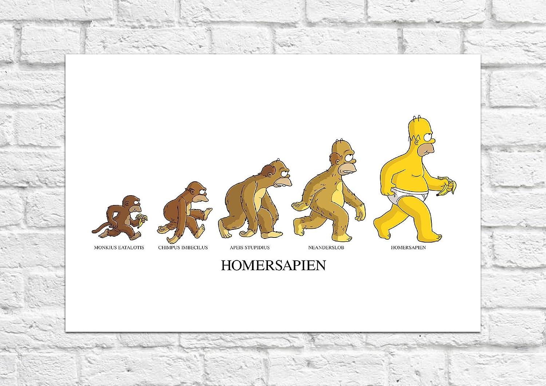 Homersapien evolución–The Simpsons (Homer)–Póster/Art–sin impresiónhttps://amzn.to/2JlCOvs