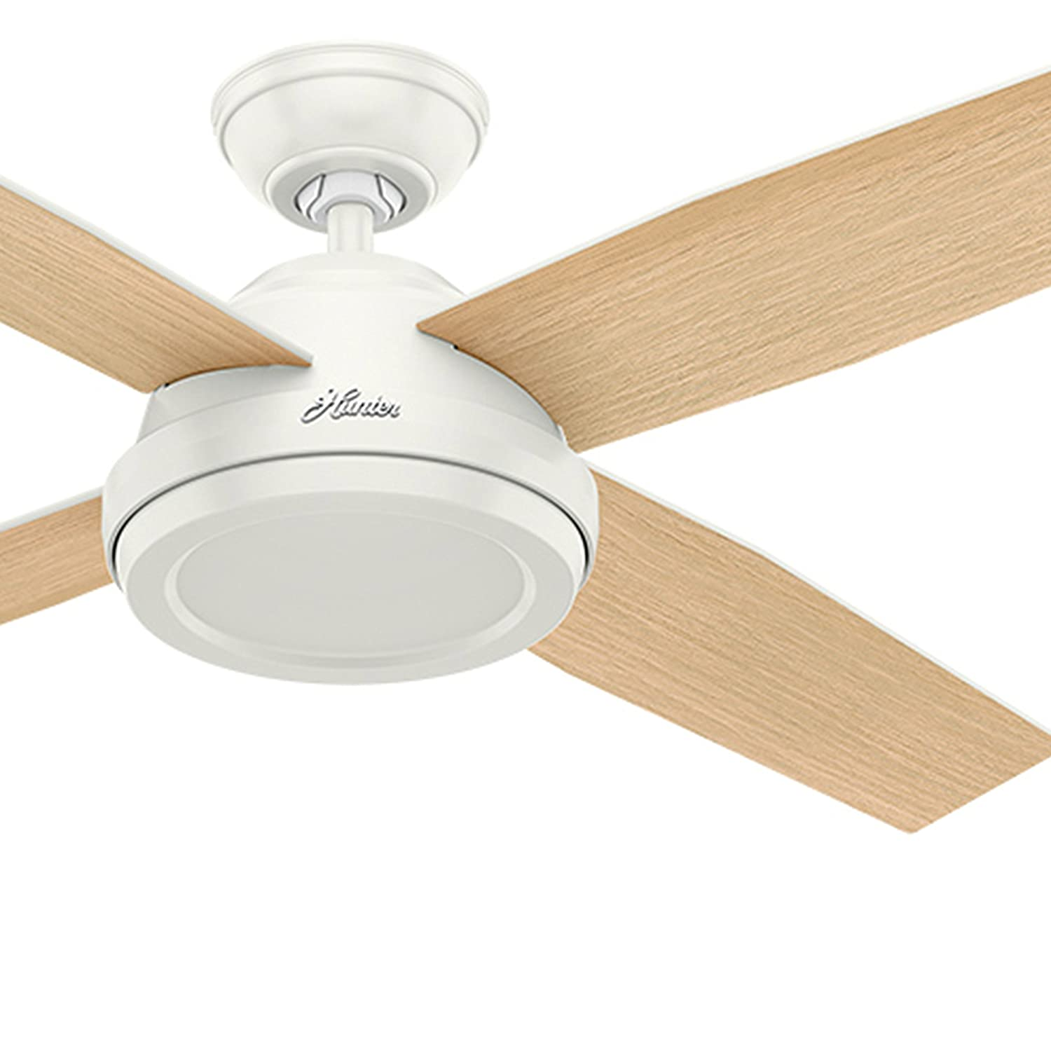 Hunter Fan 52 inch Contemporary Ceiling Fan without Light and Remote ...