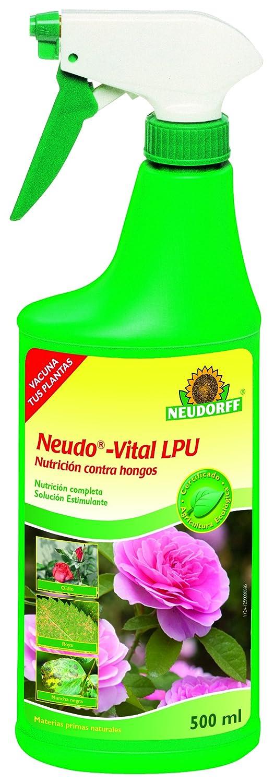 Neudorff 436 Neudo-Vital AF Rosen-Pilzschutz, 500 ml