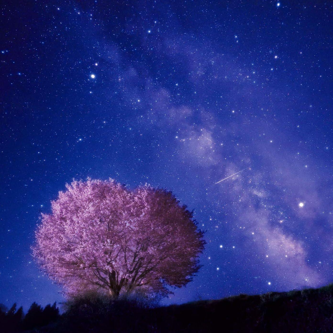星空 Ipad壁紙 夜桜の上を流れる天の川 その他 スマホ用画像122963