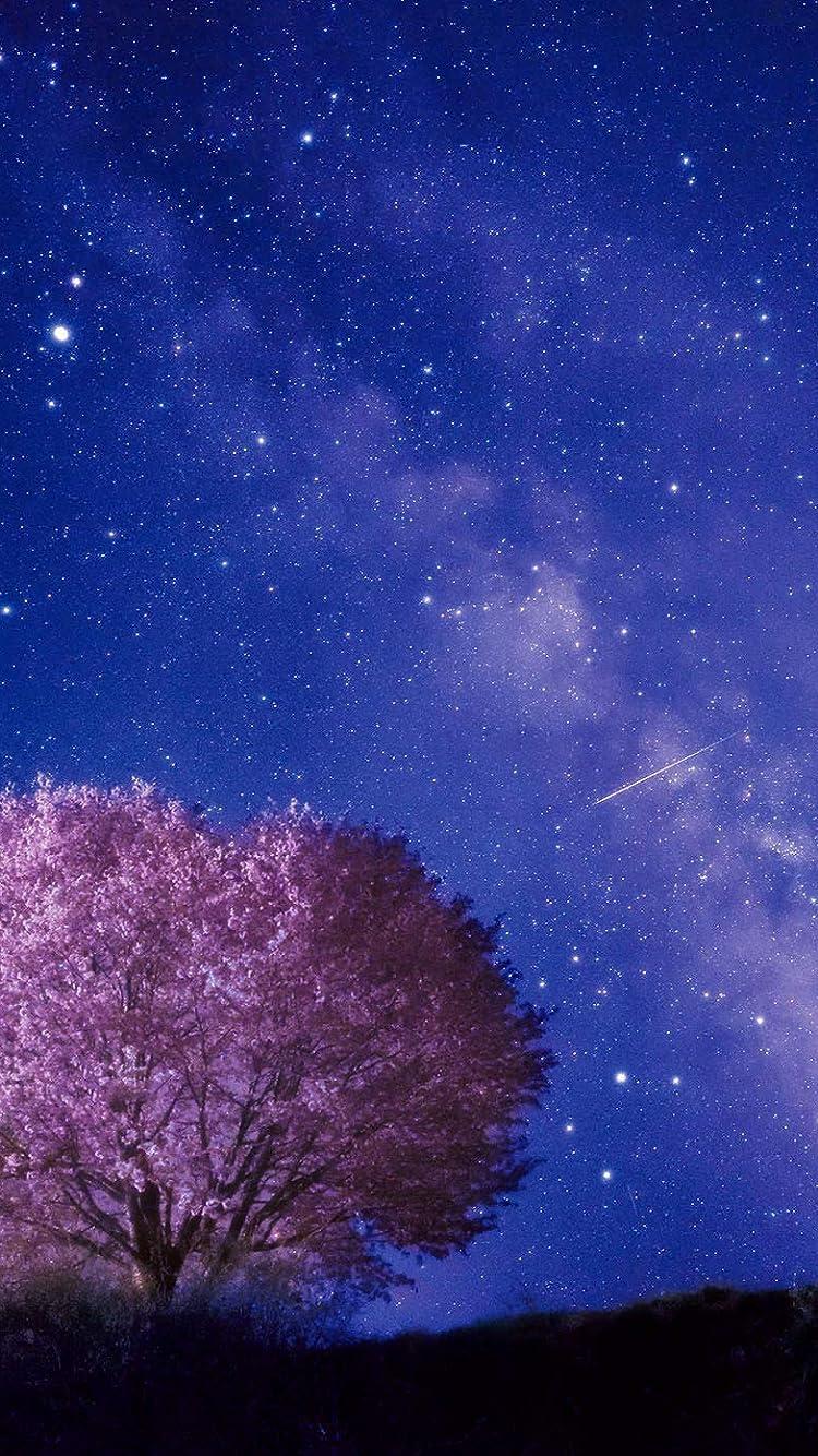 星空 Iphone Se 8 7 6s 750 1334 壁紙 夜桜の上を流れる天の川 その他 スマホ用画像
