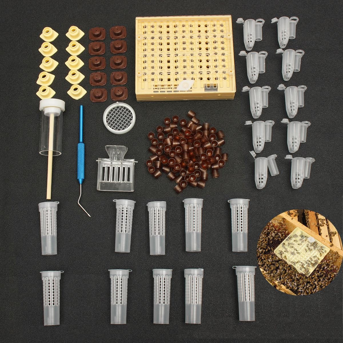 SODIAL 155pcs plastic Queen Rearing System Cultivating Box Cell Cups Bee Catcher Cage Beekeeping Tool Equipment