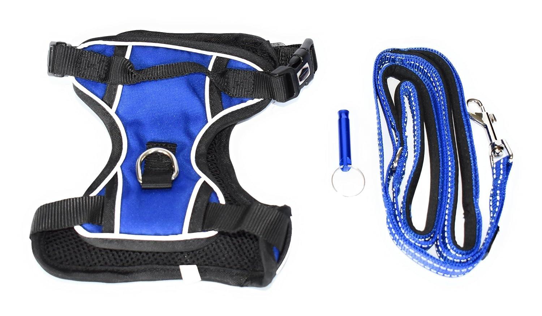 bluee X-Large bluee X-Large ANSALE Adjustable Dog Harness Leash Set with Training Whistle (X-Large, bluee)