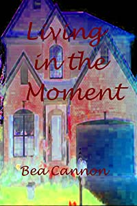 Living in the Moment (Cady and Sam Book 2)