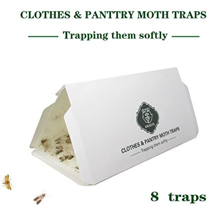 Pantry Moth U0026 Cloth Moth Traps Safe, Nontoxic U0026 Odor Free, Hybrid Pheromone  Attractant