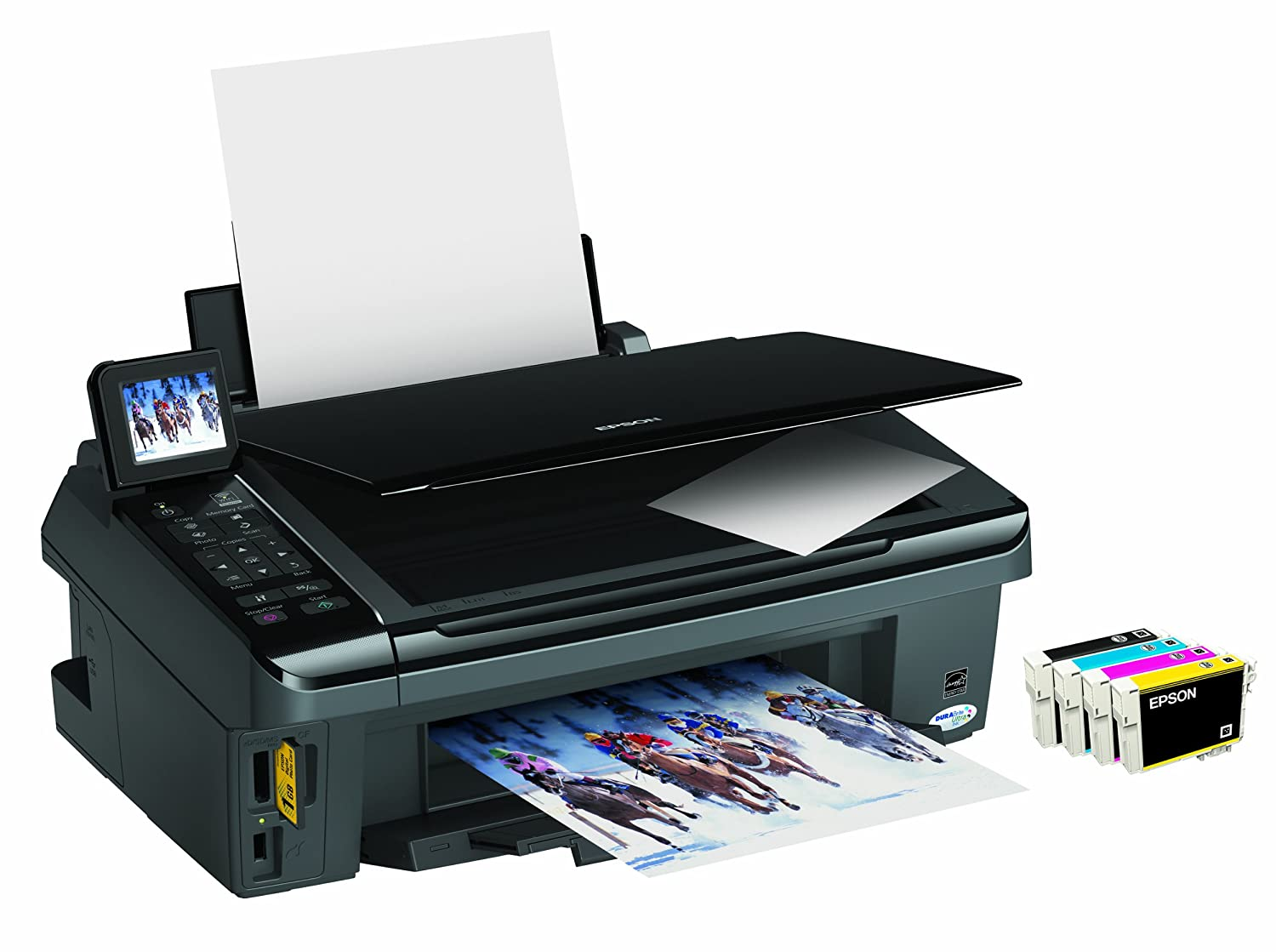 EPSON SX510 WINDOWS 8.1 DRIVER DOWNLOAD