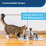 PetSafe Drinkwell 360 Multi-Pet Stainless Steel Dog and Cat Fountain - Filtered Water - 128 oz. Water Capacity