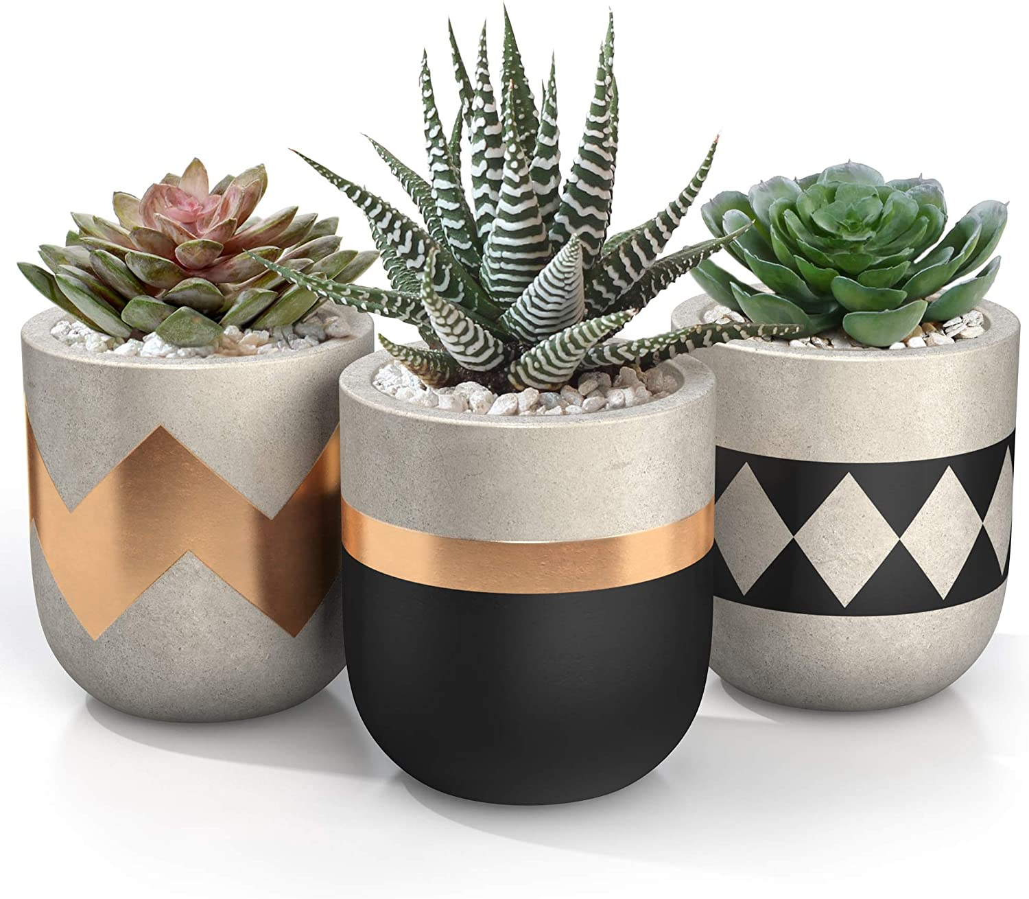 3 inch Small Succulent Pots with Drainage - Set of 3 Concrete Planter Pots  for Succulent Plants - Cement Planter Cactus Pots - Use as Succulent