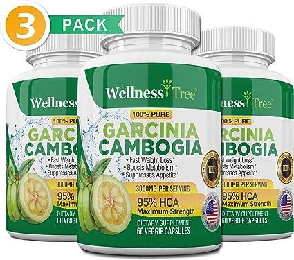 Garcinia diet max pills review