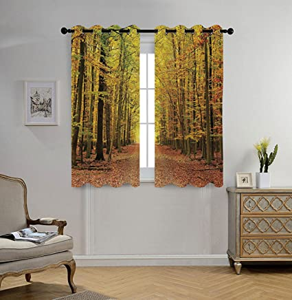 Attirant Stylish Window Curtains,Fall Decorations,Pathway In Fall Forest With Faded  Leaves Dramatic Romantic