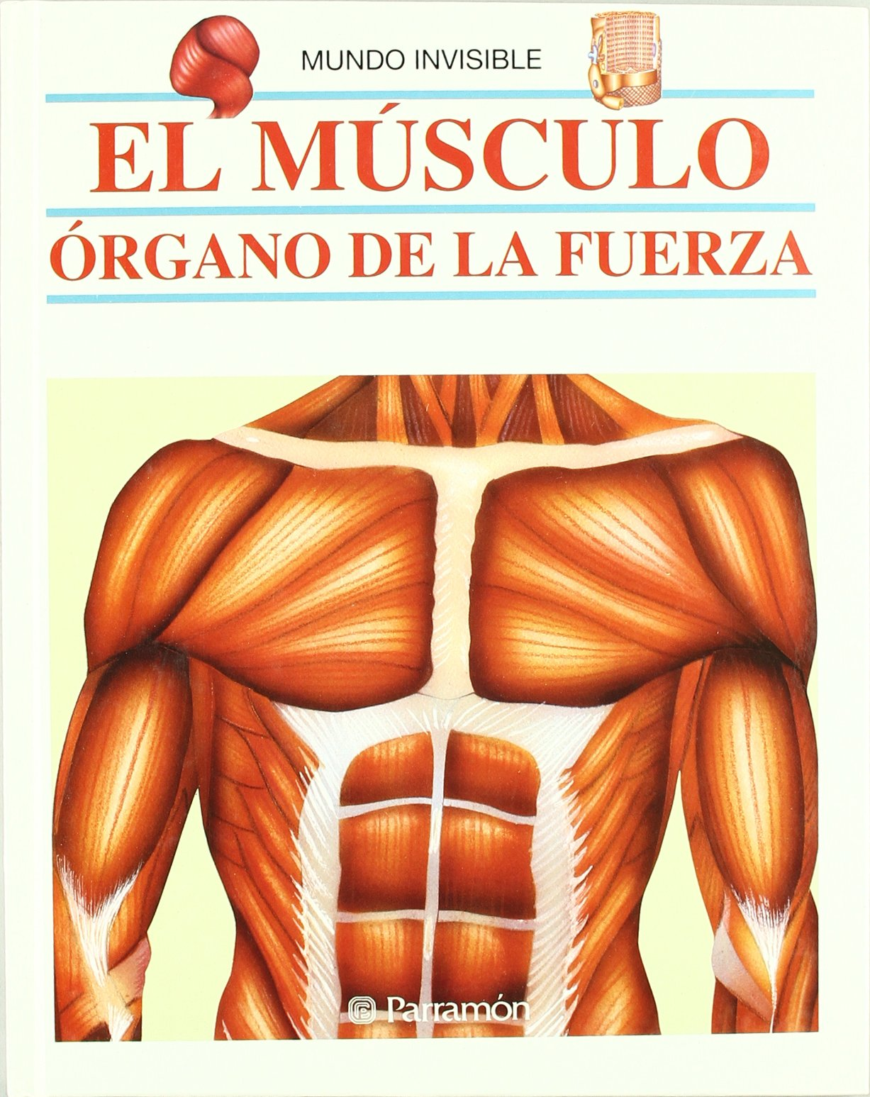 Download El musculo/ The Muscle (Coleccion) (Spanish Edition) pdf epub