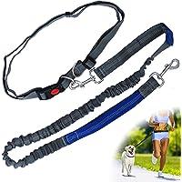 Zenify Hands Free Dog Lead for Running, Walking, Hiking, Canicross Dual Handle Comfortable Waist Belt Leash Band…