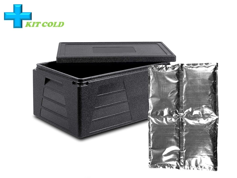 Kit de frío – 1 contenedor de 42 litros + 1 placa fría de 2 kg: Amazon.es: Industria, empresas y ciencia