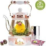 Teabloom Buckingham Palace Teapot & Flowering Tea Gift Set (6 Pieces) - 40 oz Borosilicate Glass Teapot, Porcelain Lid, Teapot Warmer, Stainless Steel Tea Infuser + 2 Rose Blooming Teas