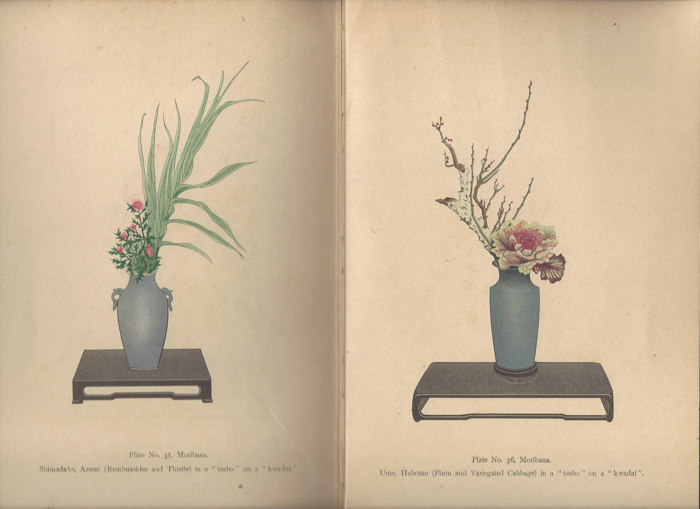 The Theory of Japanese Flower Arrangements: Josiah Conder: Amazon.com: Books