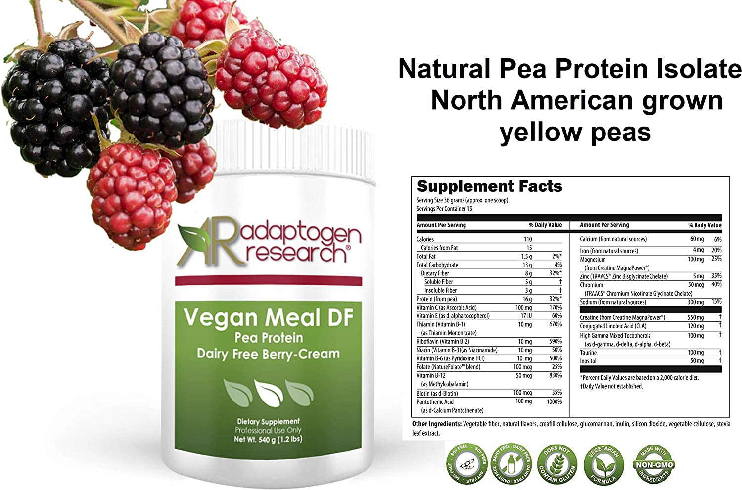 Vegan Meal DF PaleoSnack DF Pea Protein Meal Supplement Berry-Cream Plant Protein Powder from North American Farms Easy to Digest 1.2 lbs 540g