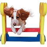 (ローズウッド) Rosewood ワンちゃん用 スモール ドッグアジリティ ハードル ドッグトイ 犬用おもちゃ 運動器具 ペット用