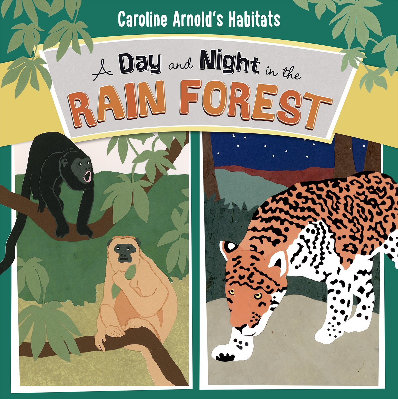 Read Online A Day and Night in the Rain Forest (Caroline Arnold's Habitats) PDF