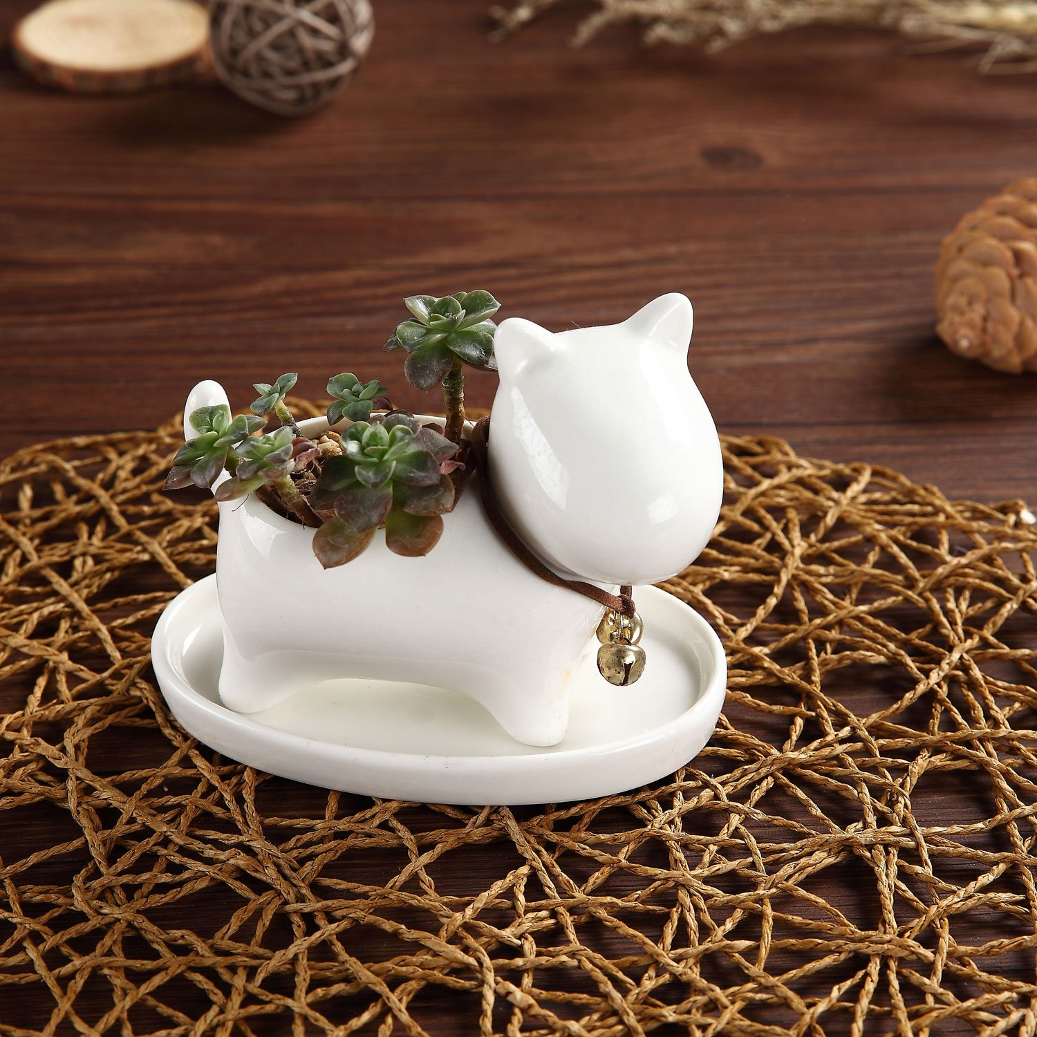 T4U Lovely Puppy Dog Design Ceramic Succulent Plant Pot Cactus Flower Pots Container Porcelain Holder Planter Decoration with Golden Bell and Tray – Pack of 1