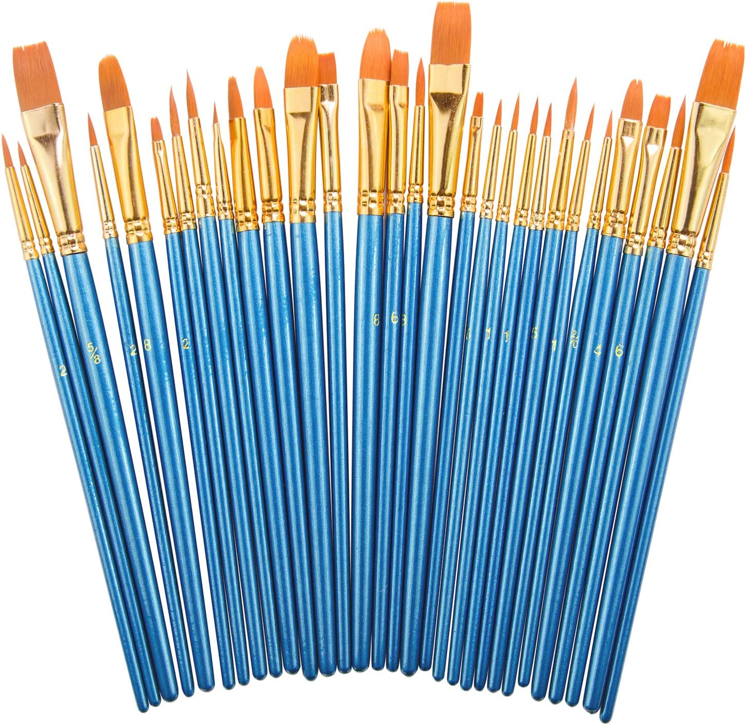 Paint Brush Set by heartybay 20 pcs Nylon Hair Brushes for Acrylic Oil Watercolor Painting Artist Professional Painting Kits