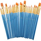 Paint Brush Set by heartybay, 30 pcs Nylon Hair Brushes for Acrylic Oil Watercolor Painting Artist Professional Painting Kits