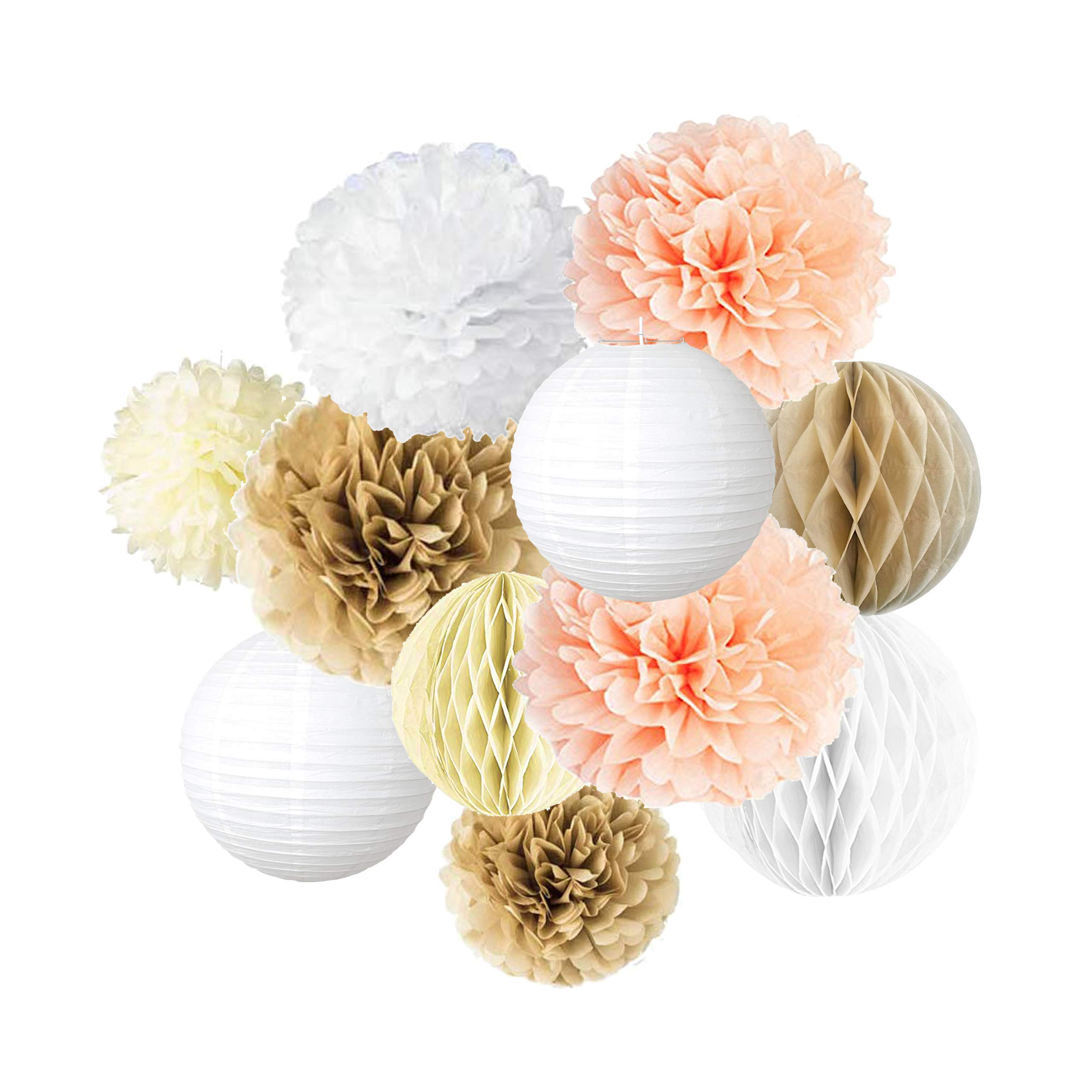 Pastel Grey 10 Tissue Paper Flowers for Wedding Bridal Shower Bachelorette Baby Shower Decor Vidal Crafts 20 PCS Dusty Pink Tissue Paper Pom Pom Kit Ivory 8 Birthday 6 14 Rose Gold