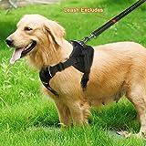 Raffaelo Pet Dog Harness Pet Dog Vest Adjustable Dog Harnesses, Outdoor Dog Training Harness Vest for Medium and Large Dogs - Black of Medium