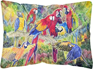 Caroline's Treasures 8600PW1216 Parrot Canvas Fabric Decorative Pillow, 12H x16W, Multicolor