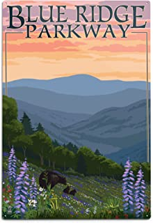 product image for Lantern Press Blue Ridge Parkway, Virginia, Bear Family and Spring Flowers (12x18 Aluminum Wall Sign, Wall Decor Ready to Hang)