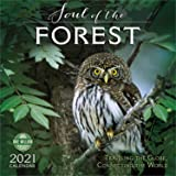The Soul of the Forest 2021 Wall Calendar: Traveling the Globe, Connecting the World