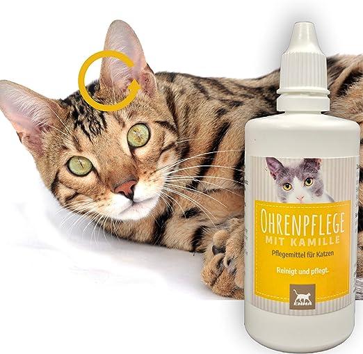 EMMA Limpiador de oídos Gatos I 100ml I Limpieza de oídos con manzanilla I Cuidado de oídos para la picazón, sacudiendo la Cabeza: Amazon.es: Productos para mascotas