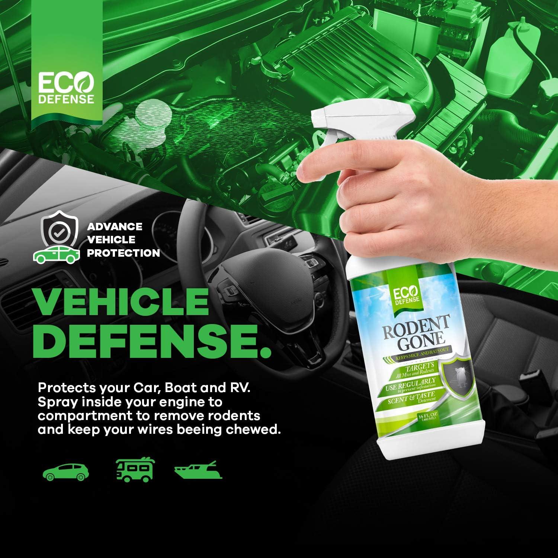 Amazon.com: Eco Defense Repelente para ratones, 16 onzas ...