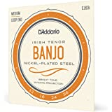 D'Addario EJ63I Nickel Irish Tenor Banjo Strings, 9-30