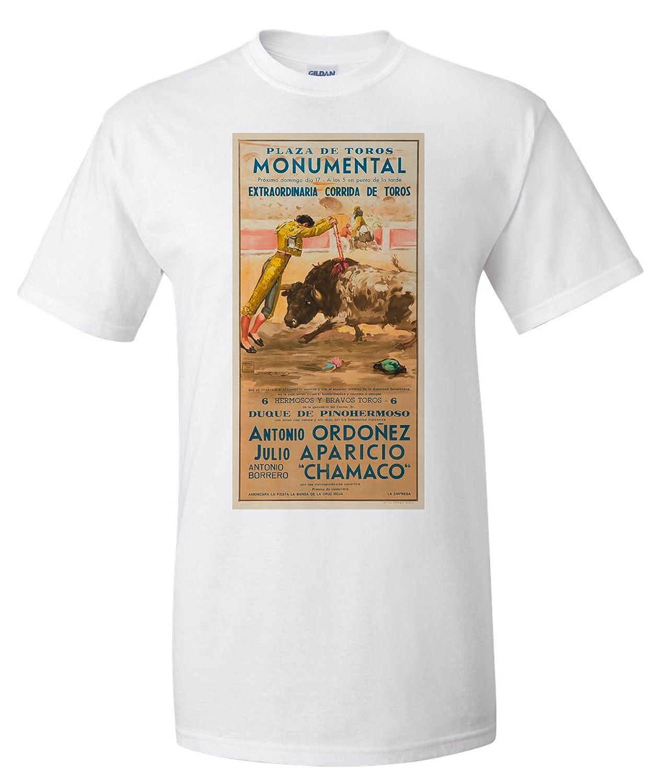 Amazon.com: Plaza de Toros Monumental - Ordonez - Aparicio ...