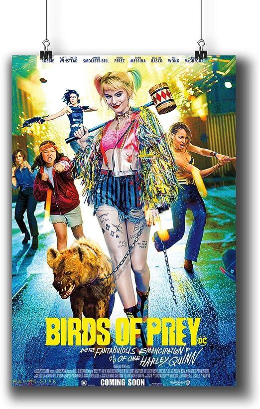 Amazon Com Pentagonwork Birds Of Prey Dc Comics Movie Poster 8 3x11 7 A4 Prints W Stickers 2020 Film Margot Robbie 1243 101 Posters Prints