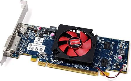 Amazon Com Radeon Hd 6450 1gb 64 Bit Ddr3 Pci Express 2 1 X16 Hdcp Renewed Computers Accessories