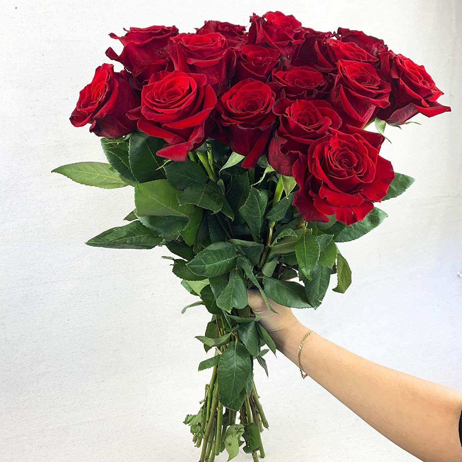 Green Choice Flowers - 24 (2 Dozen) Premium Red Fresh Roses with 20 inch Long Stem Farm Fresh Flowers Beautiful Red Rose Flower Cut Per Order Direct from Farm Fast Free Delivery Long Lasting by Greenchoiceflowers (Image #4)