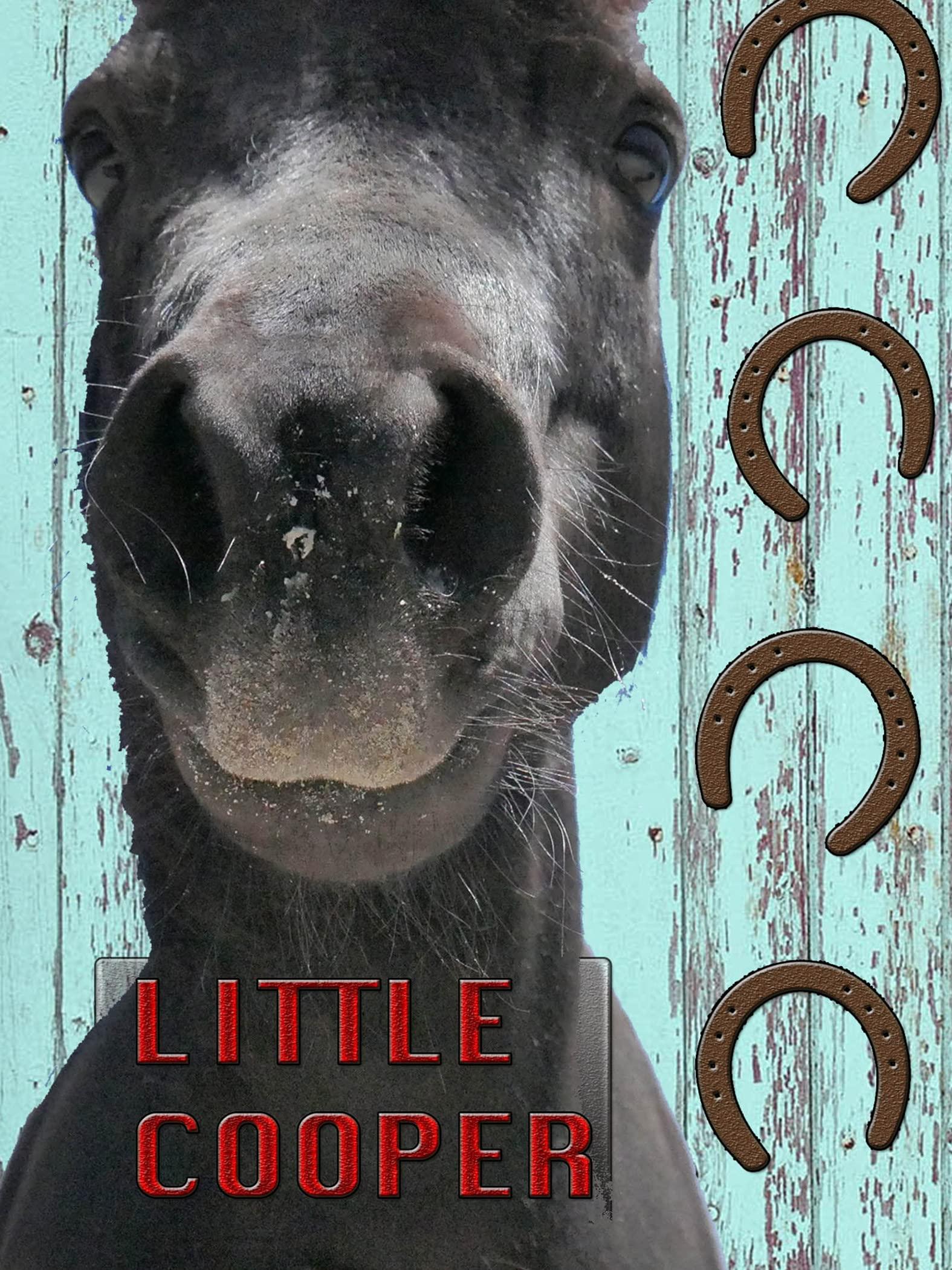 Little Cooper on Amazon Prime Video UK