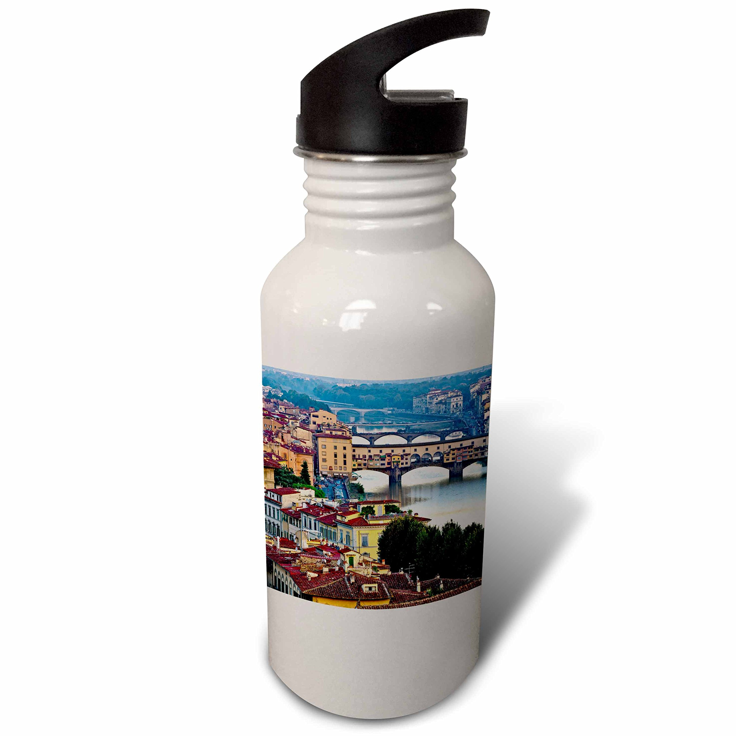 3dRose wb_277583_2 Italy, Florence, River View of the City Straw Water Bottle