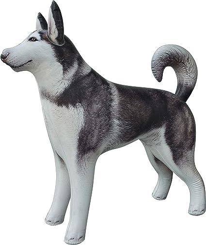 Amazon.com: Jet Creations - Animal hinchable para mascota ...
