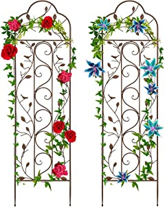 Best Choice Products Set of Two 60x15-inch Iron Arched Garden Trellis w/Branches, Birds for Lawn, Garden, Backyard, Climbing Plants