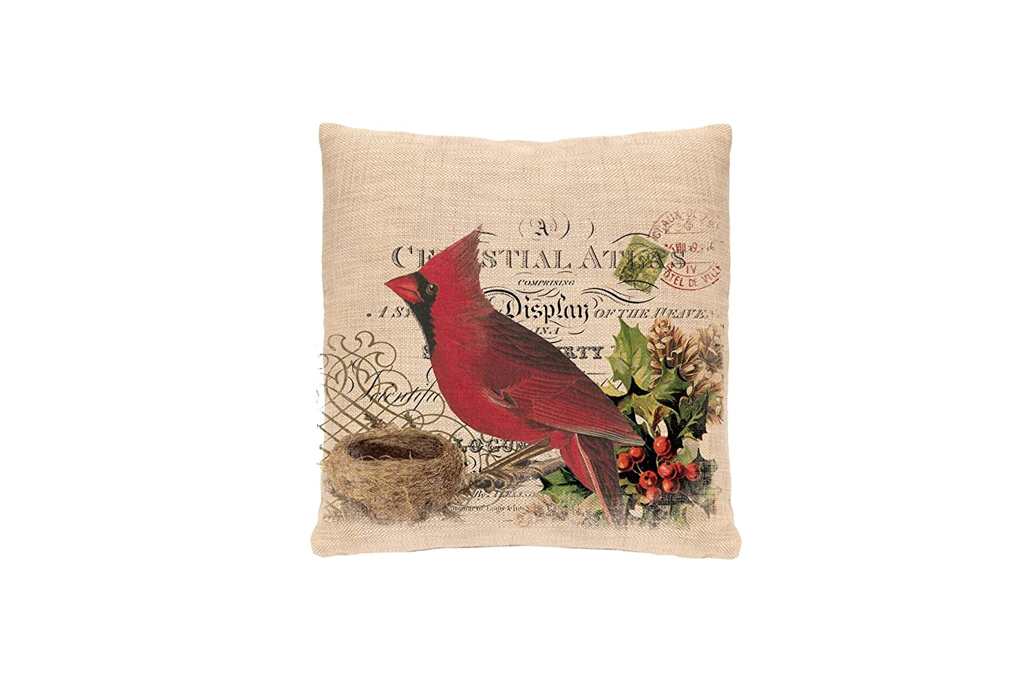 Natural Heritage Lace Winter Garden Cardinal Woven Pillow 18 by 18-Inch