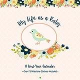 My Life as a Baby: A First-Year Calendar (Birds)