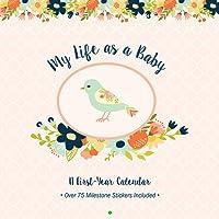 My Life as a Baby: A First Year Calendar (Birds)