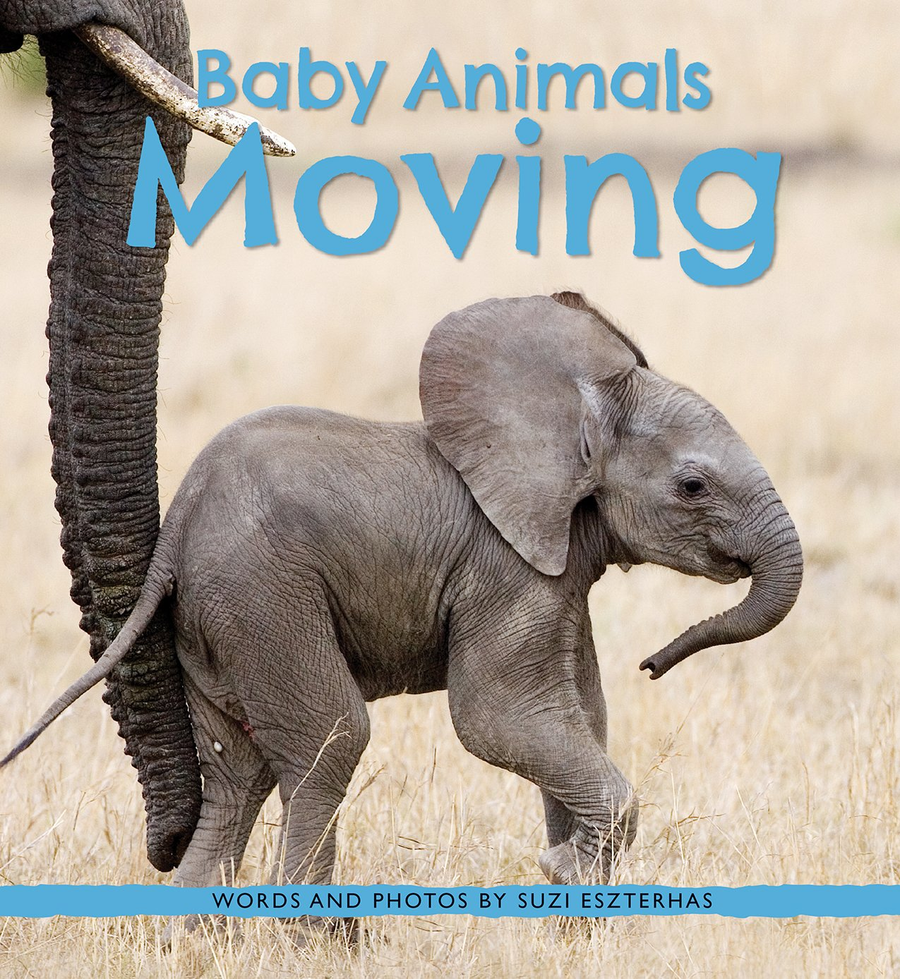 Image result for baby animals moving eszterhas amazon