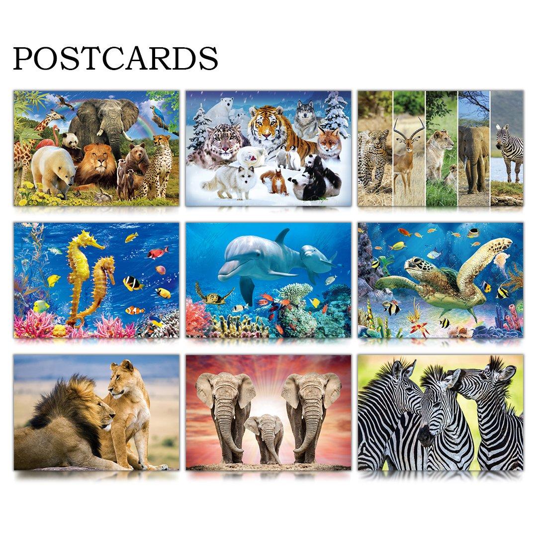 CEIEC3D Lenticular 3D Postcards Set of 9 Variety Animals Theme Greeting Cards for Preschool, Kindergarten, or Elementary School Teachers (Sea Animal)